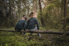 2 девушки самостоятельно в лесе Стоковое Фото