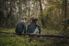 2 девушки самостоятельно в лесе Стоковые Фото