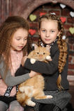 2 девушки сестры с котом Стоковые Фото