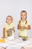 2 девушки сжимали фруктовый сок в juicer Стоковые Фото