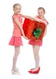 2 девушки с большой коробкой Стоковые Фото