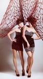 2 девушки с высокой сетью Стоковое фото RF