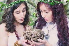 2 девушки с гнездом птицы Стоковая Фотография RF