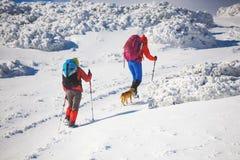 2 девушки с собакой Стоковая Фотография