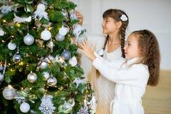 2 девушки украшают рождественскую елку Стоковое Изображение RF