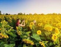 2 девушки фотографируя в поле солнцецвета Стоковые Фото