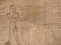 египетская стена стоковая фотография rf