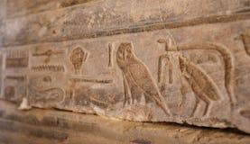 Египетские иероглифы в виске покойницкой Seti i, Луксор, Египет стоковые фотографии rf