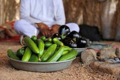 Египетские овощи фермы Стоковое Изображение RF