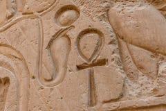 Египетские старые иероглифы на каменной стене Крупный план символа ankh вечной жизни стоковые изображения rf