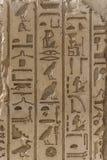 Египетский алфавит фараона стоковые изображения rf