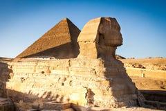 Египетский сфинкс с ptramid в предпосылке Стоковое Изображение RF