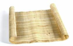 египетский papyrus Стоковые Изображения