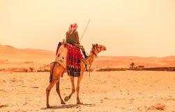Египет, Каир; 19-ое августа 2014 - египетские пирамиды в Каире Свод виска Стоковые Изображения RF
