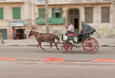 египтянин города cabman alexandria стоковое фото