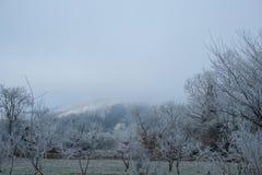 легко редактируйте изображение к зиме вектора валов Стоковое Изображение