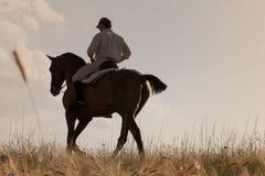 его заход солнца всадника лошади Стоковое фото RF