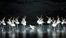 Его с разбитым сердцем сцена последнего Ojta-The озера лебед Озер-балета лебедя Стоковое фото RF