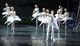 Его с разбитым сердцем сцена последнего Ojta-The озера лебед Озер-балета лебедя Стоковые Изображения RF