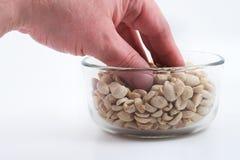 еда арахисов Стоковая Фотография RF