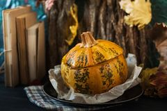 Еда в тыкве заполненная тыква Стоковые Изображения RF