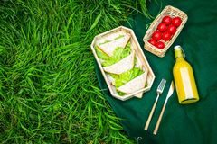 Еда для пикника на скатерти на зеленой траве Концепция еды внешняя Сандвичи, овощи, выпивают космос экземпляра взгляд сверху стоковая фотография
