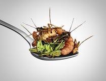 Еда еды черепашок экзотической иллюстрация вектора