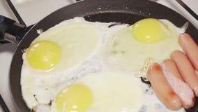 Еда, завтрак, лоток, варя, зажарила, еда, протеин, сток-видео