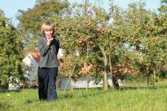еда мальчика яблока Стоковая Фотография