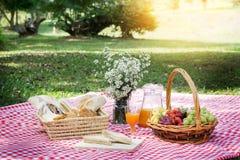 Еда обеда пикника Outdoors паркует концепцию еды, крупный план пикника стоковая фотография