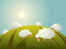 еда овец травы поля иллюстрация вектора