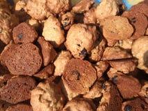 Еда печений Galletas стоковые фотографии rf