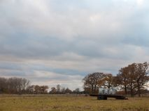Еда поля задней части хобота блоков памяти металла земледелия Стоковая Фотография