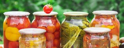 Консервация овощей Пробелы Природа выборочного фокуса стоковые фотографии rf