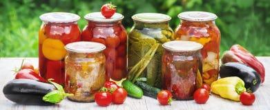 Консервация овощей Пробелы Природа выборочного фокуса стоковые фото
