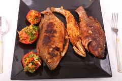 Еда рыб с салатом Стоковые Фото