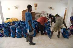 еда сортируя волонтеров Стоковые Изображения
