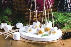 Еда Marshmellow рождества провозглашанное тост концепцией на ручках на branc ели одеяла корзины пикника деревянных конусов предпо Стоковые Фото