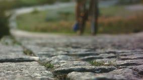 Едущ велосипед гористый в замедленном движении акции видеоматериалы
