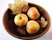 еды цвета имбиря предпосылки коробки кленовых листов яблок осень плодоовощ свежести белой сладостная здоровая Стоковые Фото