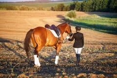 ее женщина лошади стоковое фото rf