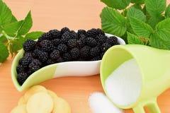 Ежевики в керамическом шаре, печеньях и чашке сахара, предпосылки ежевик зеленого растения Стоковое Фото