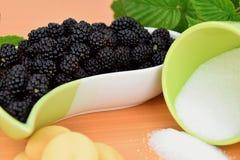 Ежевики в керамическом шаре, печеньях и чашке сахара разливают, ежевики зеленого растения предпосылки Стоковая Фотография