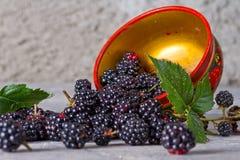 Ежевики в традиционном русском блюде Стоковые Изображения