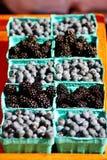 Ежевики и голубики сверкая в солнце на Cahrleston, рынке фермера SC Стоковые Изображения RF