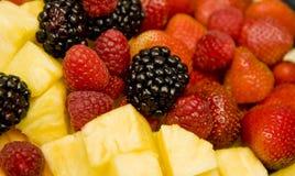 ежевики ягод красные Стоковое Изображение