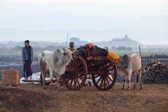 Еженедельный рынок в положении Шани, Мьянме Стоковая Фотография