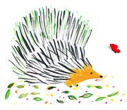 Еж и бабочка Стоковые Фотографии RF