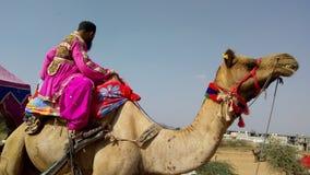Езда верблюда Стоковые Фотографии RF