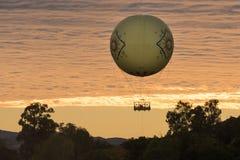 Езда воздушного шара на парке сафари зоопарка Сан-Диего Стоковая Фотография